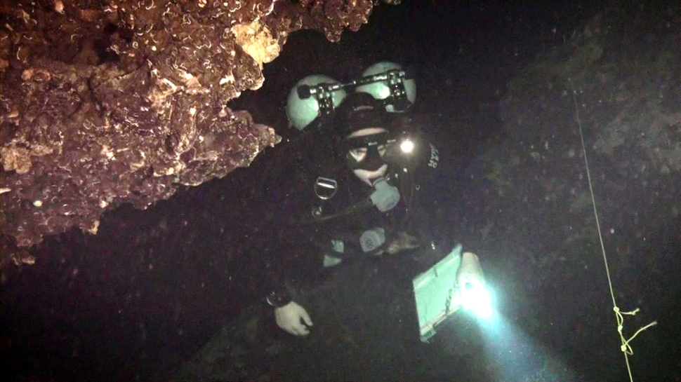 Fernando Calderon-Gutierrez conducting a biological survey in an anchialine cave